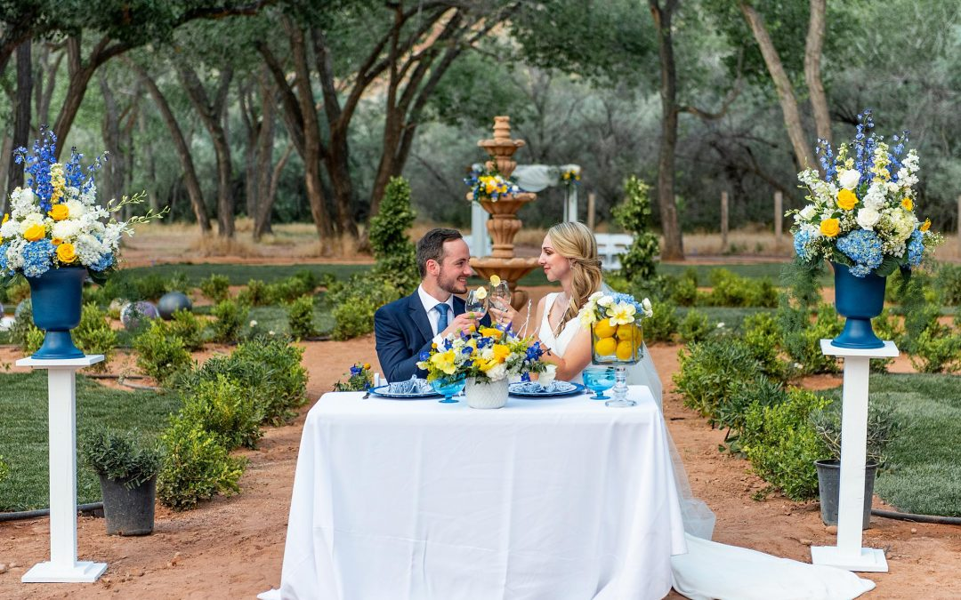 """Rental FAQ: """"Can I Get Custom Linens for My Event in Southern Utah?"""""""